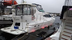 Cruiser Yacht 44.5