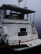 Sea ray 42